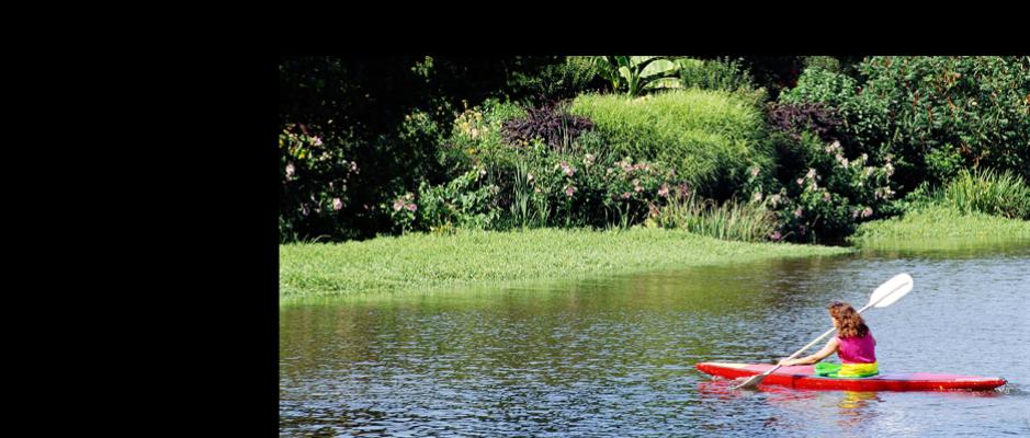 canoe kayak sport sante