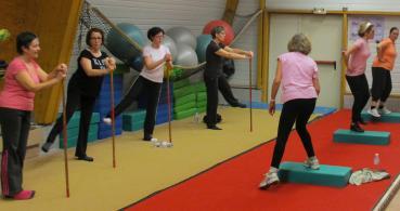 photo 1 Les cigales Gymnastiques de Rochefort sur Loire Section Gym détente