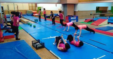 logo Les Pélicans Gymnastique Les Epesses