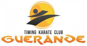 logo Timing Karaté Club Guérandais