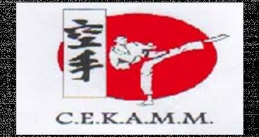 logo Centre d'Enseignement des Arts Martiaux Michelois