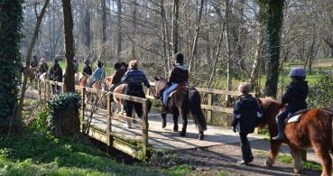 photo 3 Association pour la Promotion Equestre