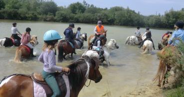photo 4 Association pour la Promotion Equestre