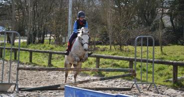 photo 5 Association pour la Promotion Equestre